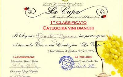 La prima volta che Jankara ha vinto un premio, nel 2011.
